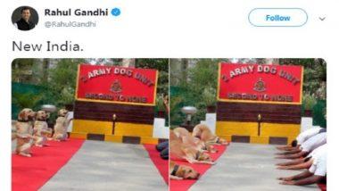 लष्करी जवानांच्या योगदिनाच्या 'त्या' फोटोवरील ट्विट नंतर राहुल गांधी सोशल मीडियात ट्रोल