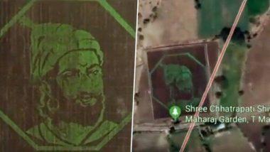 लातूर येथे तयार झाले देशातील पहिले Grass Painting; 7 दिवस गवत उगवून साकारले शिवाजी महाराज (Video)