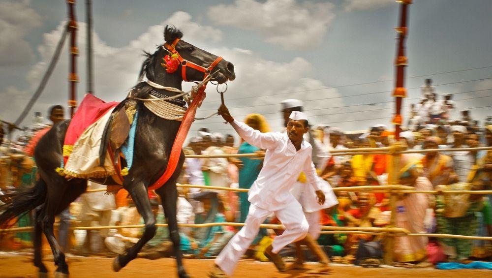 Ashadhi Ekadashi Wari 2019: यंदा 24 जूनला होणार 'संत तुकाराम महाराज पालखी' चं प्रस्थान; पहा गोल रिंगण, उभं रिंगण कधी असेल?