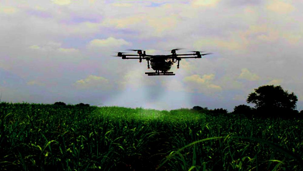 Agricopter: आयआयटी मद्रासच्या विद्यार्थ्यांनी शोधलं 'अॅग्रीकॉप्टर'; ड्रोनच्या माध्यमातून कीटकनाशक फवारणी करुन पिकांवार ठेवणार बारीक नजर