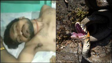 दारुच्या नशेत सापाला चावला माणूस, कुटुंबीयांनी केले मेलेल्या सापावर अंत्यसंस्कार; उत्तर प्रदेश राज्यातील एटा जिल्ह्यात घडली विचित्र घटना