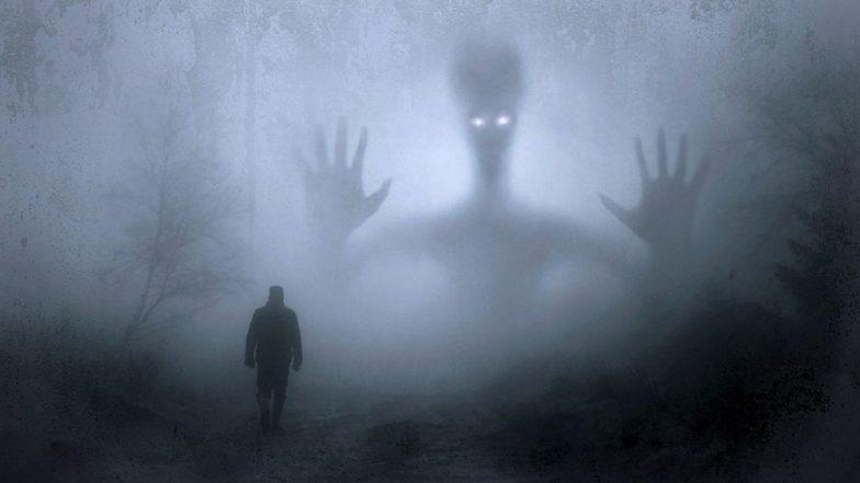 गडचिरोली जिल्ह्यात भूतांचे वास्तव्य? रात्री अचानक पडतो दगडांचा पाऊस; नागरिकांमध्ये भीतीचे सावट तर पोलीस झाले हतबल