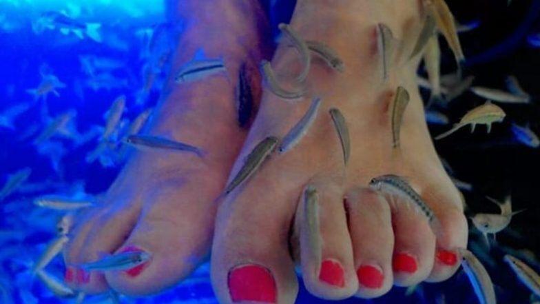 Fish Pedicure करणं पडलं महाग, महिलेला कापावी लागली पायाची बोटं, वाचा नेमकं काय घडलं?