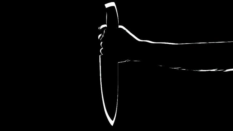 शिवसेना महिला नगरसेवकाच्या जावयाने केली पत्नीची हत्या; अंबरनाथ येथील मलंगगड परिसरातील घटना