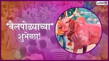 Bail Pola 2019: बैल पोळा सण महाराष्ट्रात श्रावण अमावस्या दिवशी साजरा करण्याचं महत्त्व काय? जाणून घ्या पूजा विधी आणि परंपरा