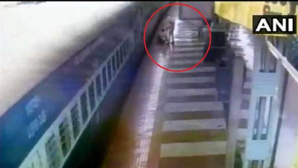 Video: युवकाचा धावत्या ट्रेनमध्ये चढण्याचा जीवघेणा प्रयत्न; CRPF जवानामुळे थोडक्यात वाचले प्राण