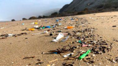 प्लास्टिकचा पाऊस पडतोय? वैज्ञानिकांनी केला धक्कादायक खुलासा