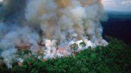 अॅमेझॉनच्या जंगलाला भीषण आग, बॉलिवूड कलाकारांनी #PrayForAmazons वापरत सोशल मीडियात व्यक्त केल्या भावना