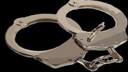 Sub Inspector Sandeep Dahiya Arrested: प्रियसीला गोळी मारल्यानंतर सासऱ्यांची हत्या करणाऱ्या पोलीस उपनिरीक्षक संदीप दहिया ला अटक