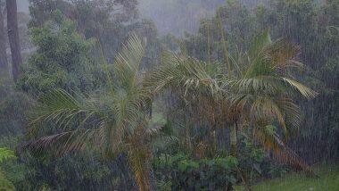 हवामान खात्याकडून सतर्कतेचा इशारा; महाराष्ट्रात 17 ऑक्टोबरपासून वादळी पावसाची शक्यता