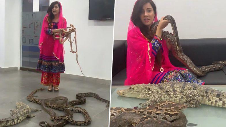 हातात अजगर, शेजारी मगर घेऊन भडकली पाकिस्तानी गायिका Rabi Pirzada; भारतीय आणि पीएम नरेंद्र मोदींना दिली साप हल्ल्याची धमकी (Video)