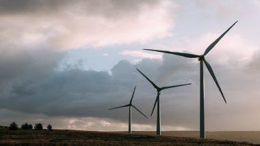 पवनउर्जा क्षेत्रात काम करणारी Suzlon Energy कंपनी दिवाळखोरीच्या उंबरठ्यावर