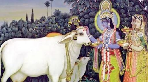 Govatsa Dwadashi 2019 Date: दिवाळी सणाचा पहिला दिवस वसुबारस का आणि कसा साजरा केला जातो?