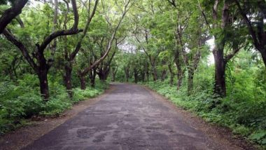 C40 Urban Nature Declaration: भविष्यामध्ये लक्षणीय हिरवळ असणाऱ्या जगातील 31 शहरांच्या यादीमध्ये Mumbai चा समावेश