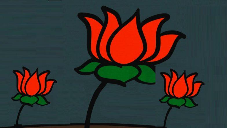 Maharashtra Assembly Election 2019: विधानसभा निवडणुकीसाठी BJP चे 164 उमेदवार रिंगणात; पहा संपूर्ण यादी