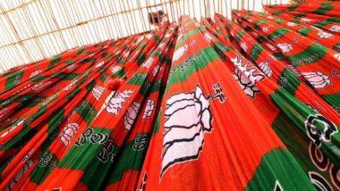 Maharashtra Assembly Election Result2019: निकालापूर्वीचBJP ची दिवाळी; आकाश कंदील, फुलांनी सजले मुंबईतील प्रदेश कार्यालय