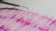 Palghar Earthquake: पालघर मध्ये  3.7 रिश्टल स्केलचा भूकंप