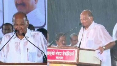 Maharashtra Assembly Elections 2019: साताऱ्यामध्ये भर पावसात पार पडली शरद पवार यांची सभा; 'लोकसभेसाठी उदयनराजेंना उमेदवारी देऊन केली चूक' (Video)
