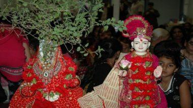 Tulsi Vivah 2019: वैवाहिक जीवनातील समस्या दूर करण्यासाठी तुळशी विवाहाच्या दिवशी करा 'ही' कामे