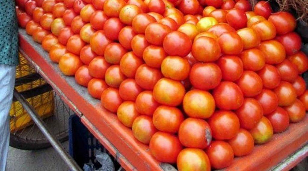 टोमॅटोचे दर 80 रुपये प्रति किलोवर पोहचल्याने सामान्यांच्या खिशाला कात्री, सरकारने घेतला मोठा निर्णय