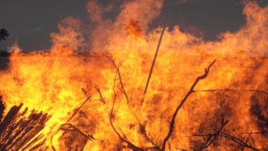 मोसमी पाऊस भारतात दीर्घकाळ थांबल्याने ऑस्ट्रेलियात वणवे; 3 ठार, 150 घरे जळून खाक