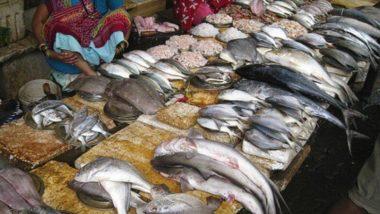 'महा' चक्रीवादळाचा मासेमारीला फटका; खराब हवामानामुळे 90 दिवसांपासून मासेमारी व्यवसाय बंद