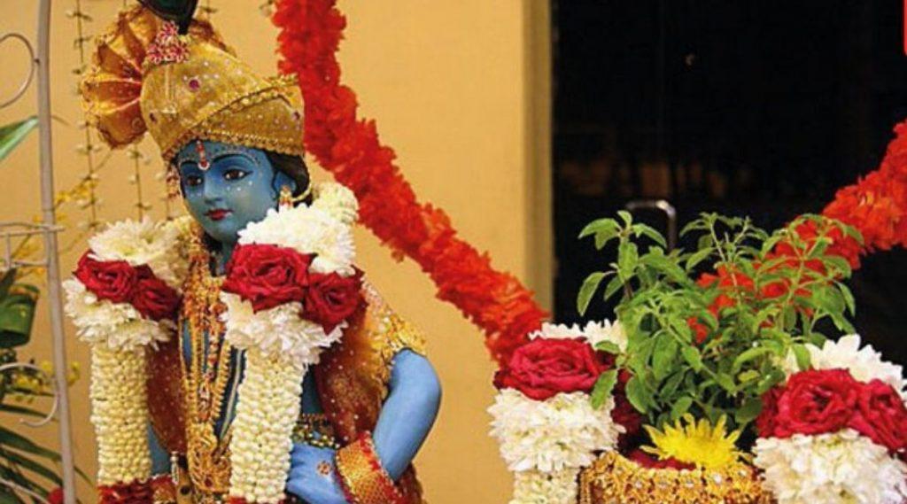 Tulsi Vivah 2019: कार्तिकी  द्वादशी ते त्रिपुरारी पौर्णिमेपर्यंत पहा यंदा तुलसी विवाह सोहळा साजरा करण्याचे मुहूर्त आणि पूजा विधी काय?