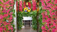 गीता जयंती व 'मोक्षदा एकादशी' चं औचित्य साधत पंढरपूरच्या विठ्ठल-रुक्मिणी मंदिर मध्ये जरबेरा फुलांची मनमोहक सजावट; पहा विठूरायाचं विलोभनीय रूप! (Photos)