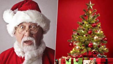 Christmas 2019: नाताळात ख्रिसमस ट्री ला का आहे विशेष महत्व; जाणून घ्या यामागची कारणे