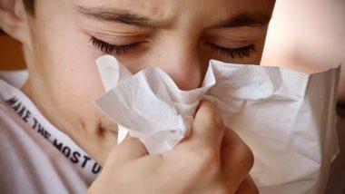 Winter Health Tips: थंडीत नाक चोंदण्यावर करा हे '5' घरगुती उपाय