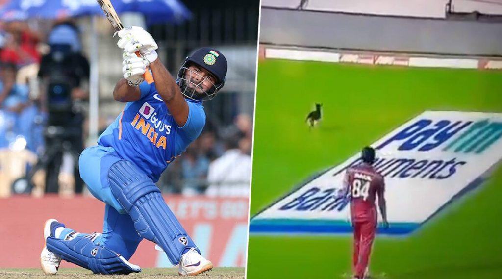 IND vs WI 1st ODI: चेन्नई मॅचमध्ये '12 व्या खेळाडूमुळे' थांबला खेळ, यूजर्सने आनंद लुटत केले मजेदार ट्विट्स