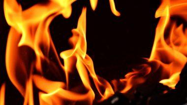 Maharashtra Sadan Fire In Delhi: दिल्ली येथील महाराष्ट्र सदन इमारतीला आग