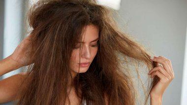 धक्कादायक! दोन वर्षांपासून स्वत: चे केस खात आहे ही महिला; डॉक्टरांच्या तपासणीमध्ये जे आढळले ते पाहून बसेल आश्चर्याचा धक्का