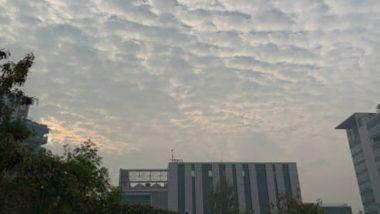 Maharashtra Weather Forecast: महाराष्ट्रात पुढील 36 तासांत जोरदार पावसाचा अंदाज,  मुंबईत पुन्हा वीजांच्या कडकडाटाची शक्यता - IMD