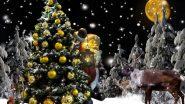 Christmas 2019: 'ख्रिसमस'चा सण साजरा करण्यासाठी सुंदर सजवा तुमचा ख्रिसमस ट्री; या 5 डेकोरेशन आइडियाजची होईल मदत