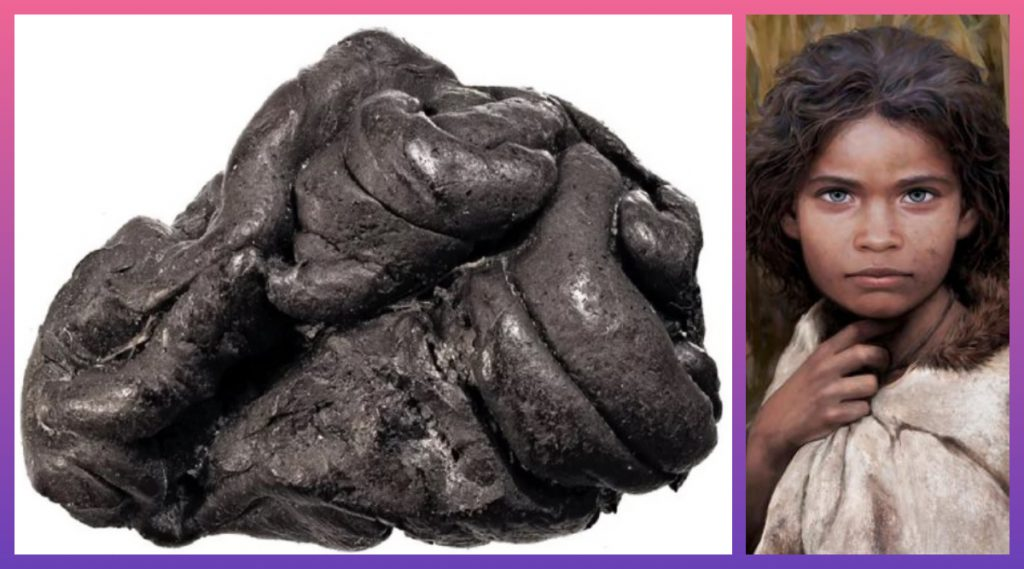 संशोधकांना मिळाला पाषाण युगातील चक्क 5700 वर्षांपूर्वीचा च्युइंग गम; काळे केस, निळ्या डोळ्यांच्या महिलेचा DNA सुद्धा मिळाला