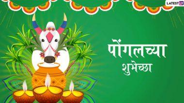 Happy Pongal 2020 Wishes: पोंगल  सणाच्या  शुभेच्छा Messages, Greetings, HD Images, Wallpaper, WhatsApp Status च्या माध्यमातून शेअर करून तमिळ बांधवांना द्या शुभेच्छा!