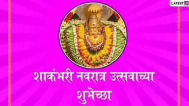 Shakambhari Navratri 2021: शाकंभरी नवरात्रोत्सव यंदा 21 जानेवारी पासून; जाणून घ्या या नवरात्रीचं महत्त्व