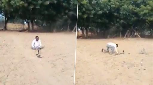 ऐकावं ते नवलचं! दारु पिऊन तरुणाने केला सापासोबत नागीण डान्स; पहा अंगावर शहारे आणणारा व्हिडिओ