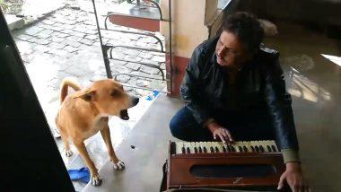 रानू मंडल यांचं 'तेरी मेरी कहानी' हे गाणं एका माणसासोबत गात आहे एक कुत्रा; व्हायरल झालेला हा व्हिडिओ सध्या नेटिझन्समध्ये घालत आहे धुमाकूळ