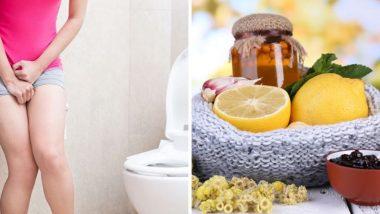 Urine Infection Home Remedies: हिवाळयात तुम्हाला युरीन इन्फेक्शन चा त्रास सतावतोय का? करा 'हे' घरगुती उपाय