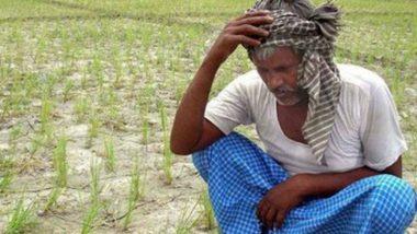 धक्कादायक! राज्यात सत्ता स्थापनेसाठी नेते भांडत असताना, एका महिन्यात तब्बल 300 शेतकऱ्यांनी केल्या आत्महत्या; चार वर्षांतील सर्वाधिक संख्या