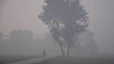 Mumbai Weather Update:  मुंबई शहरामध्ये 26 जानेवारीपासून थंडी परतणार; हवामान खात्याचा अंदाज