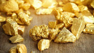 उत्तर प्रदेशच्या सोनभद्र येथे सापडली 3000 टन सोन्याची खाण; योगी सरकार लवकरच सुरु करणार खाणकाम, त्यानंतर होणार लिलाव