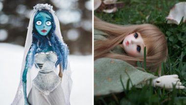 जपान: Sex Doll वर केले जातात अंत्यसंस्कार; खर्चाचा आकडा ऐकुन व्हाल चकित