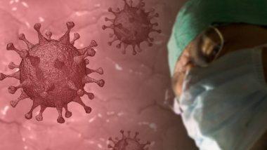 Coronavirus Pandemic: कोरोना व्हायरसने जगभरात घेतले 75 हजाराहून अधिक बळी