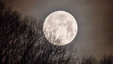 March Full Worm Supermoon 2020: सोशल मीडियामध्ये हुताशनी पौर्णिमेदिवशीच्या चंद्राच्या विलोभनीय दृश्यांचा धुमाकूळ (Photos)