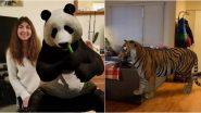 Google 3D Animals: लॉक डाऊनमध्ये झालात बोअर? Tiger, Giant Panda, Lion यांच्यासह विविध प्राणी-पक्षांना 3D इफेक्टमध्ये भेटा तुमच्या घरात