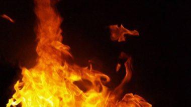 Mumbai Fire: मुंबईमध्ये धोबी तलाव जवळील Hotel Fortune येथे आग; अग्निशमन दलाच्या गाड्या घटनास्थळी दाखल