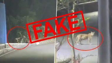 ठाणे शहरातील रस्त्यांवर फिरतोय Leopard? जाणून घ्या 'या' Viral Video मागील सत्य